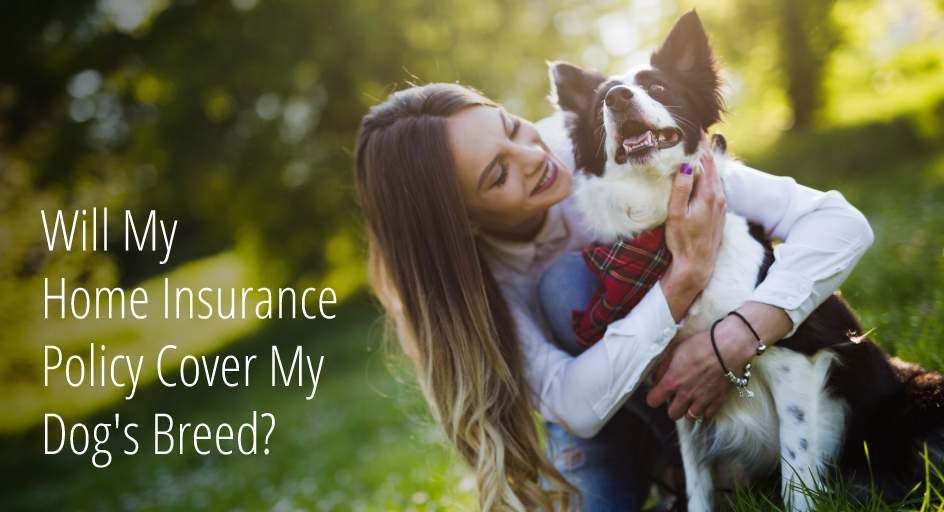 blog image: woman with her dog; blog title: will my home insurance policy cover my dog's breed